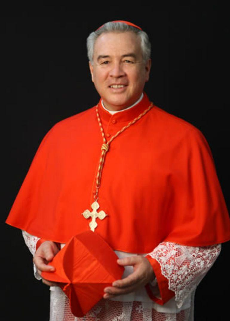 El cardenal dijo que todos se deben esforzar para erradicar la violencia