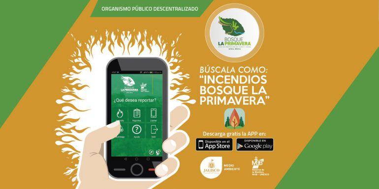 Lanzan aplicación para alertar sobre incendios en la Primavera