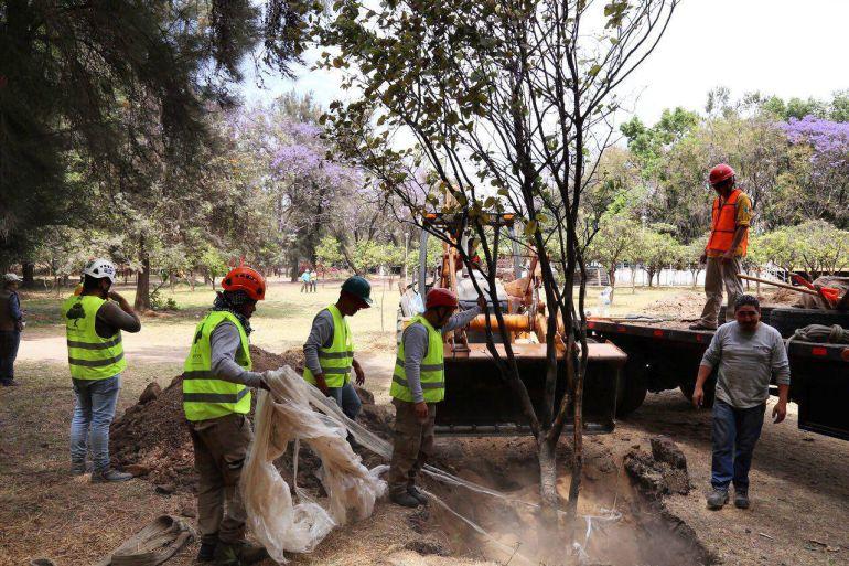 Obras en El Deán tiene aval de SEMADET: Alfaro