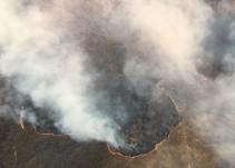 Incendio en el cerro del Tepopote afectó mil hectáreas