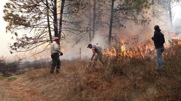 Se registran incendios en el bosque del Centinela y el cerro El Fraile