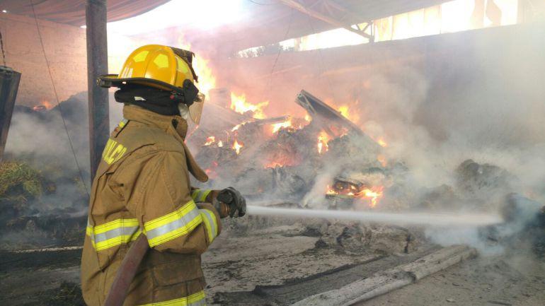 Incendio acaba con 20 toneladas de pastura
