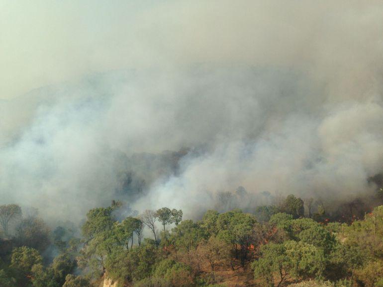 Van 250 hectáreas afectadas y dos brigadistas lesionados por incendio en La Primavera