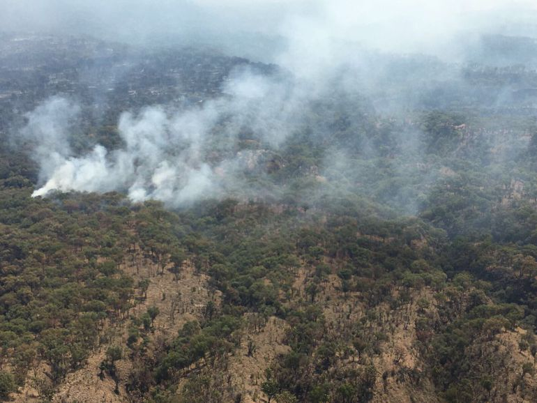 Controlan incendio forestal en La Primavera