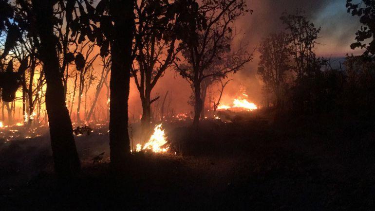 Denuncias por incendios deberán ir con sustento o se desechan: secretario general de gobierno