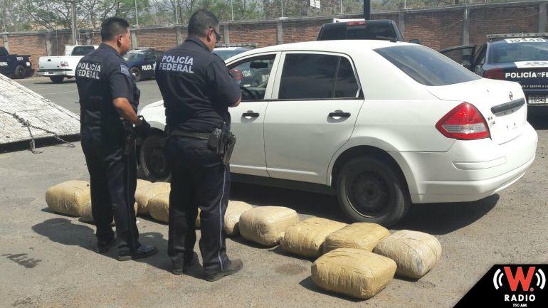Policía Federal asegura más de 500 kilos de marihuana en Magdalena Jalisco