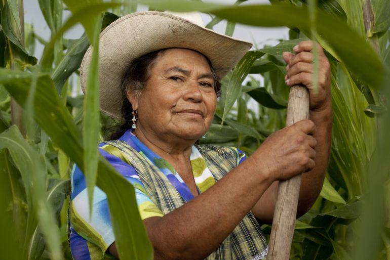 Mujeres poseen mayores habilidades en el trabajo del campo