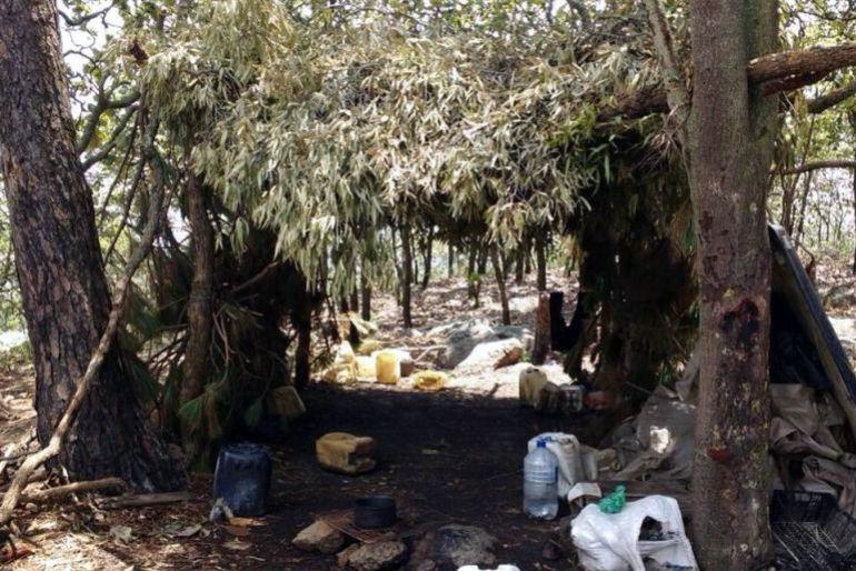 Dan prisión preventiva a 12 involucrados con narcocampamentos en Tala