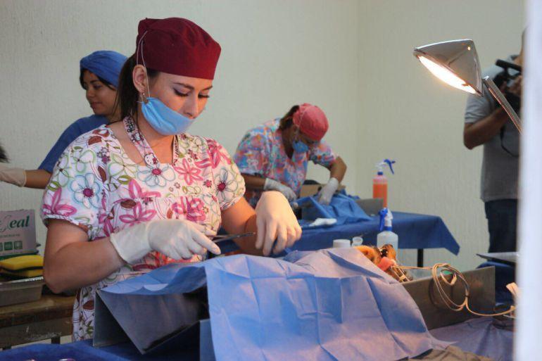 Tlajomulco continúa con programa de esterilización de mascotas