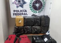 Localizan 86 kilos de droga en la Nueva Central camionera