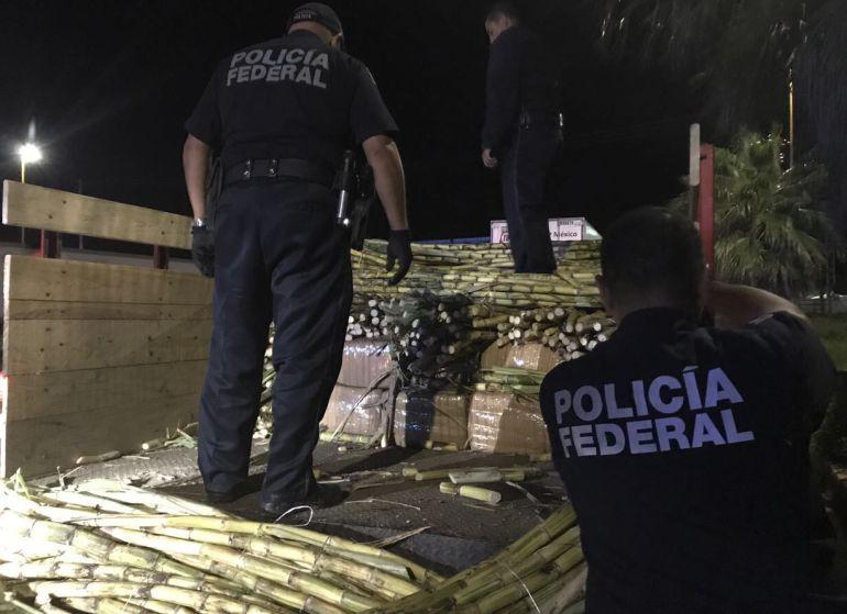 Aseguran más de 300 kilos de marihuana en Tepatitlán de Morelos