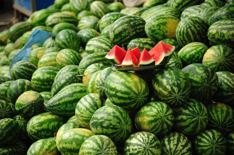 Productores de sandía, primeros afectados en Jalisco si saliera México del TLCAN