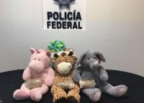 Aseguran peluches con droga en el Aeropuerto de Guadalajara