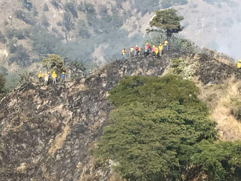 Incendio afecta cinco hectáreas del Área Natural Protegida del Bosque de la Primavera