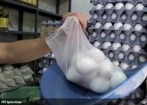 Llama Seder a denunciar a comerciantes que excedan el precio del huevo