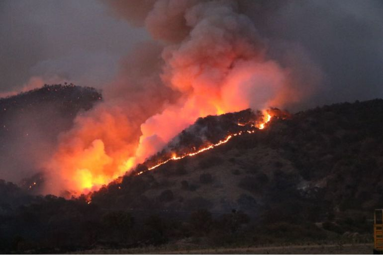 Incendios forestales en Jalisco van en decrecimiento: SEMADET