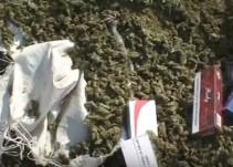 PGR incinera nueve toneladas de droga