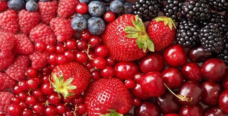 Berries superan al tequila en derrama económica