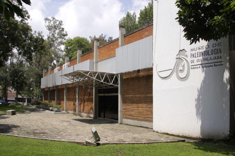 """Darán """"manita de gato"""" al Museo de Paleontología"""