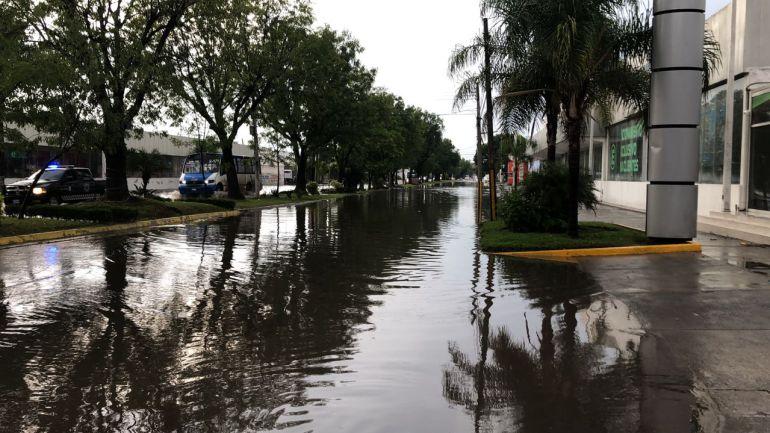 Lluvia deja inundaciones y árboles caídos