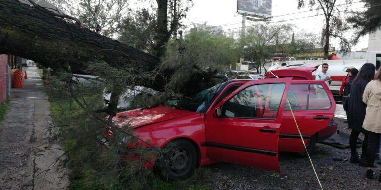 Sin lesionados por inundaciones en Zapopan