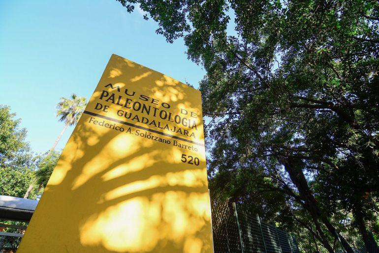 Renovarán Museo de Paleontología