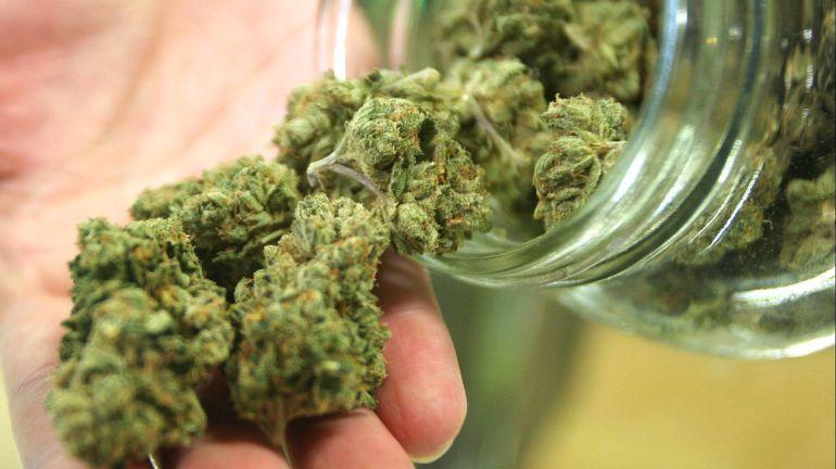Legalizar mariguana ya, pide Aristóteles a nuevos diputados