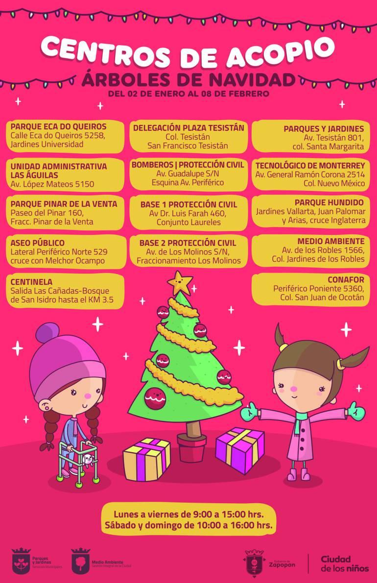 Zapopan reciclará árboles de navidad