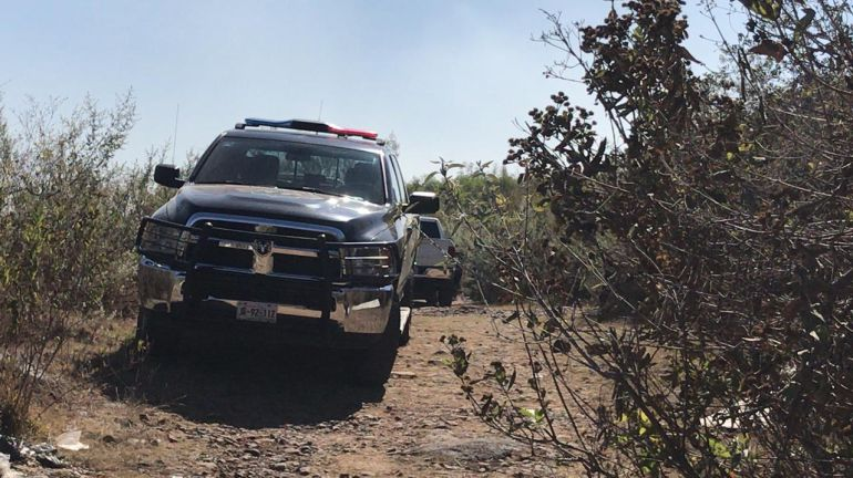 Confirman hallazgo de 4 cuerpos en fosa de Zapopan