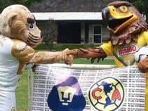 Salen a la venta los boletos para partido Pumas – América
