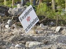 Fonatur y Profepa no dan respuesta por daños al manglar Tajamar: abogada
