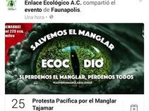 ¡Salvemos al manglar Tajamar!
