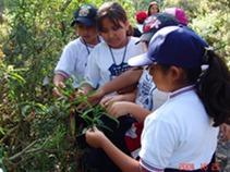 """""""Educación ambiental"""". Educación XXI del sábado 23 de enero."""