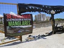 ¿Cómo han reaccionado los ecologistas respecto al manglar Tajamar?