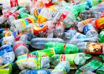 """Científicos japoneses descubrieron una bacteria que se """"come"""" el plástico PET"""