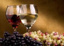 El argot del vino