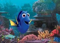 """""""Buscando a Dory"""" ¿incrementará la comercialización del pez cirujano azul?"""