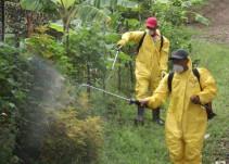 Guanajuato está usando sustancias tóxicas para combatir el dengue
