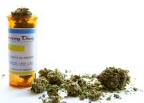 Dictamen sobre cannabis favorecería a la industria farmacéutica