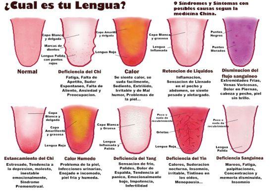 La lengua, el reflejo de tu salud