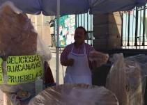 En búsqueda de las mejores guacamayas de Guanajuato