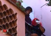 """""""Jovita la capturista"""" encuentra el amor en el Cervantino (Capítulo 3)"""