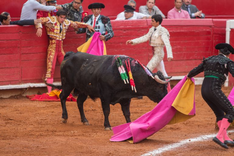 ¿Qué pasaría si se cancelan las corridas de toros en México?