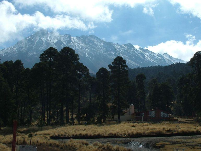 Autorizan tala en el Nevado de Toluca