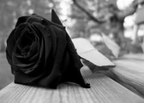¿Cómo sobrevivir a la pérdida de un hijo?