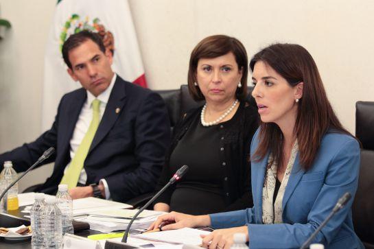 "Paloma Merodio ""voló"" de Sedesol al INEGI"
