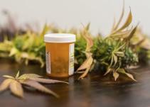 Todo sobre la marihuana medicinal y su aprobación en México