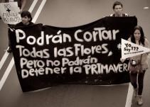 """""""El movimiento #YoSoy132 NO fue un despertar, eran jóvenes haciendo micropolítica"""""""