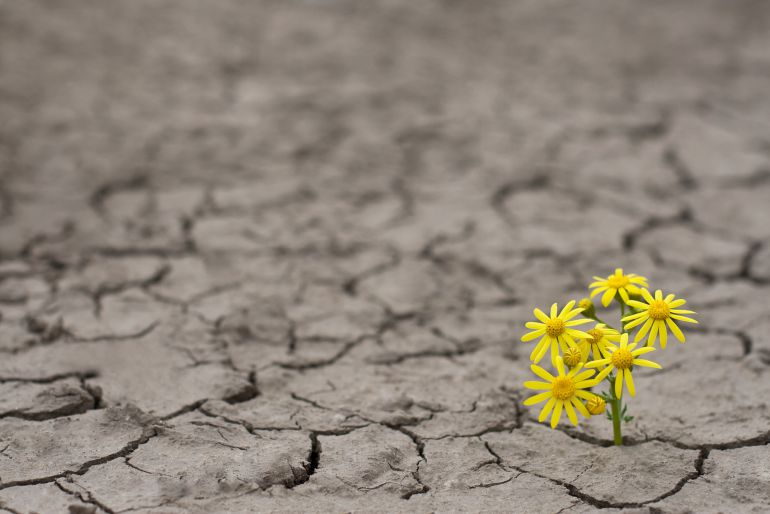 ¿Qué nos hace ser resilientes?