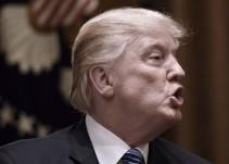 #AsíSopitas: Así respondió CNN a Donald Trump tras su ofensivo video